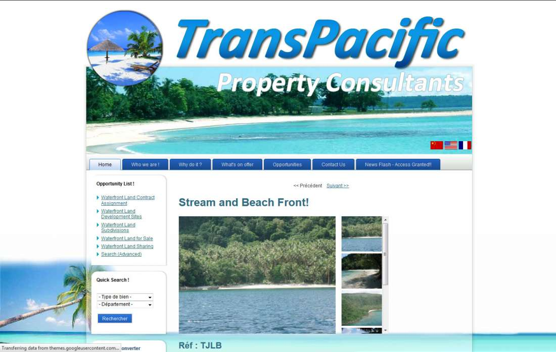 Trans Pacific Property Consultant